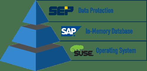 SEP Backup Software + SAP HANA Dababase + SUSE Operating System